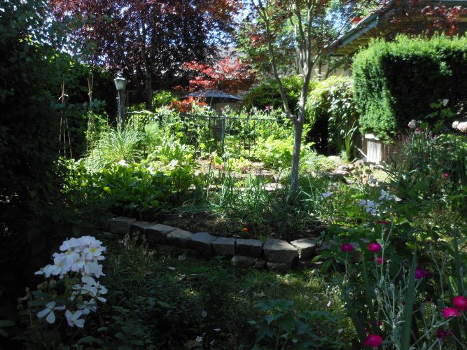 Fischer House Vegetable Garden