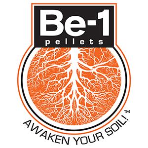 BE-1 Logos FINAL 2017
